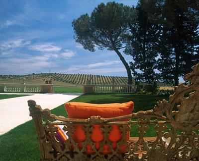 L'Andana - Tuscany, Italy