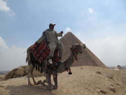 Camel Safari in Egypt